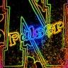 palser323