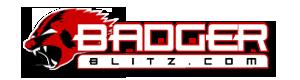 Wisconsin logo08