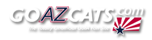 Arizona logo08