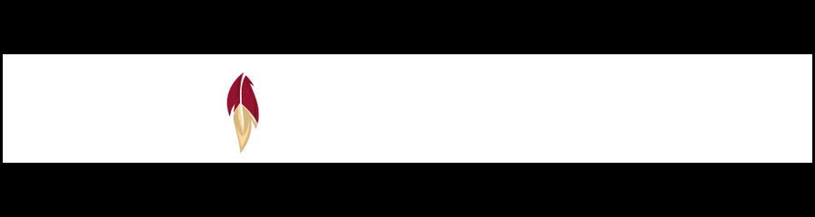 Floridastate logo08