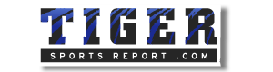 Memphis logo08
