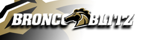 Westernmichigan logo08